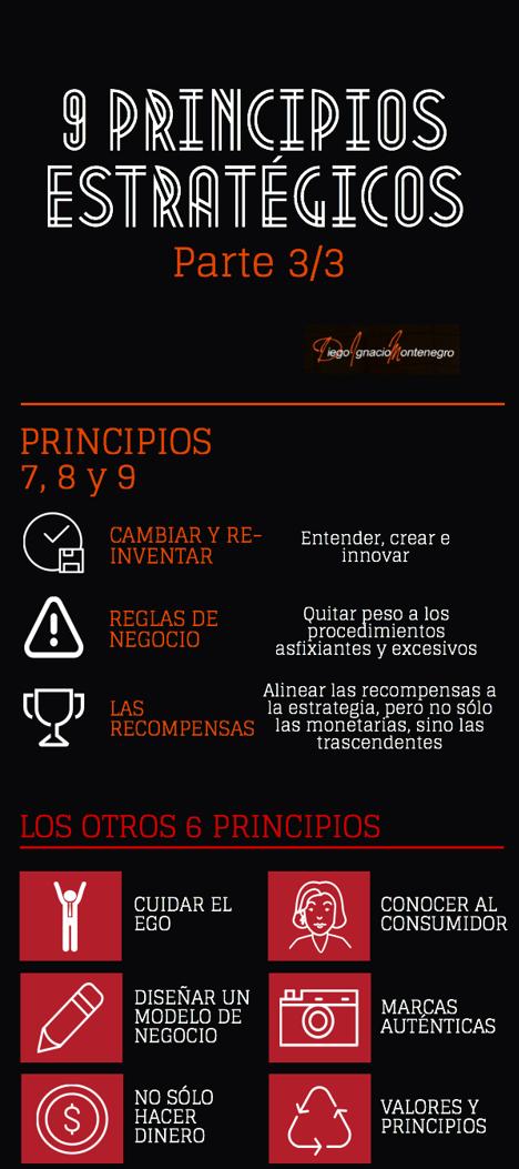 9 principios infografia